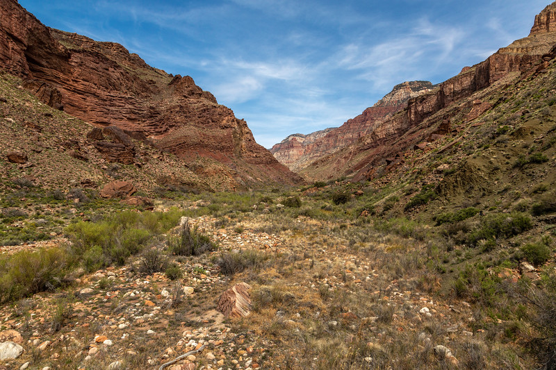 Grand Canyon 2019 Day 2_V9A5946