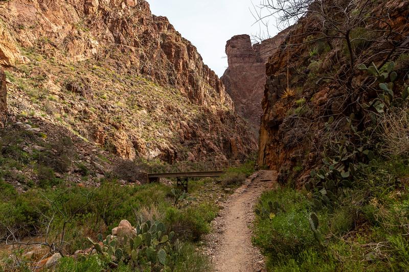 Grand Canyon 2019 Day 2_V9A5871