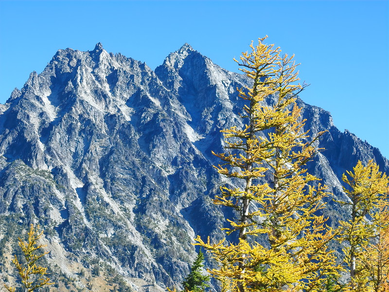 Mt Stuart and the Larch