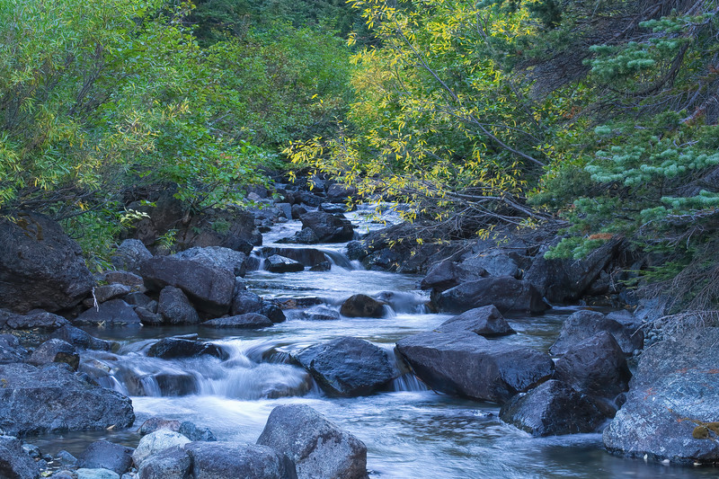 Ingalls Creek Afternoon