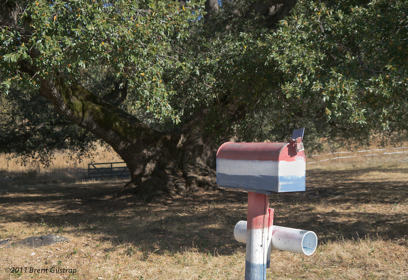 It's so big it has its own mailbox. <br /> Probably its own zipcode...