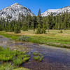 Rosemarie Meadow 9-7-17_MG_4281