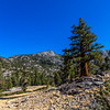 Trail to Muir Pass 9-8-17_MG_4334