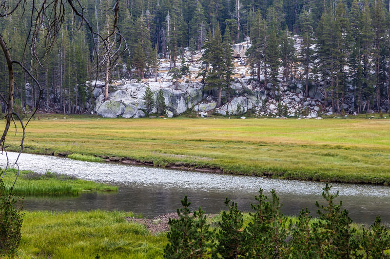 McClure Meadow 9-8-17_MG_4404
