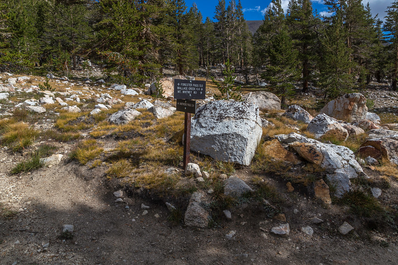 Trail sign Mt Whitney 16 1 miles 9-14-17_MG_4858