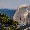 Plane and Half Dome 8-29-17_MG_3540