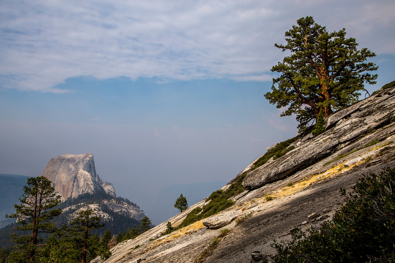 Half Dome from Clouds Rest trail_MG_3504