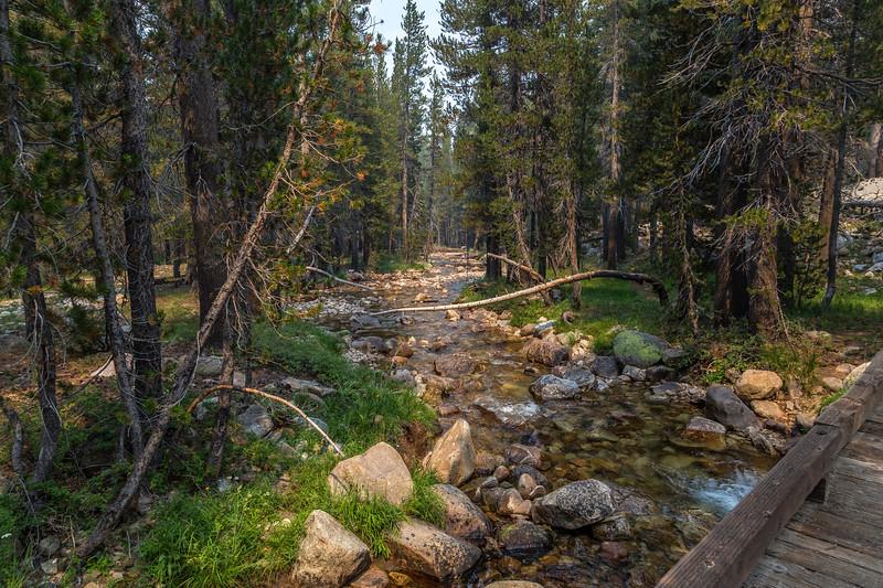 Budd Creek trail crossing 8-31-17_MG_3702
