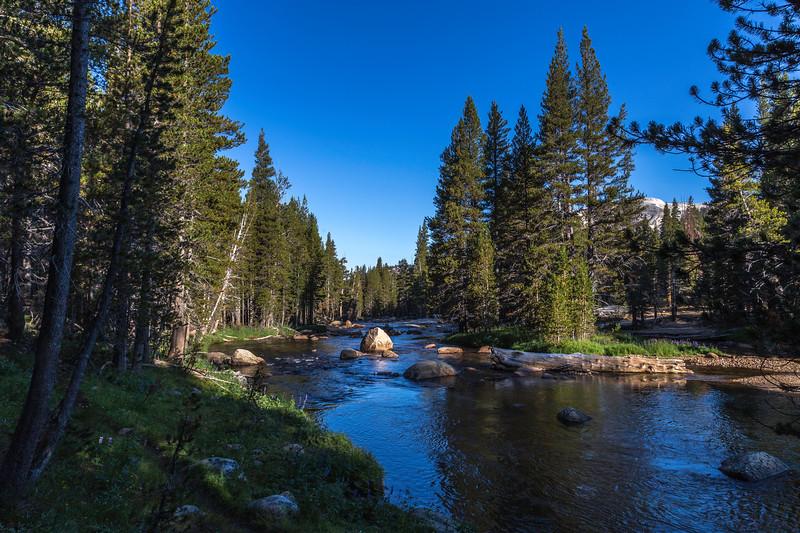 Lyell Fork of Tuolumn River 9-1-17_MG_3717