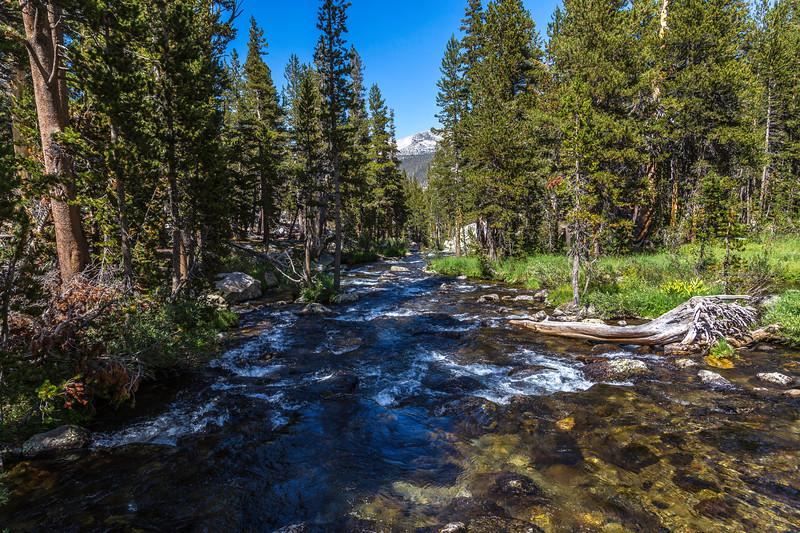 Lyell Canyon-Tuolmne River 9-1-17_MG_3803