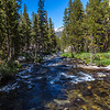 Lyell Canyon-Tuolmne River 9-1-17_MG_3803