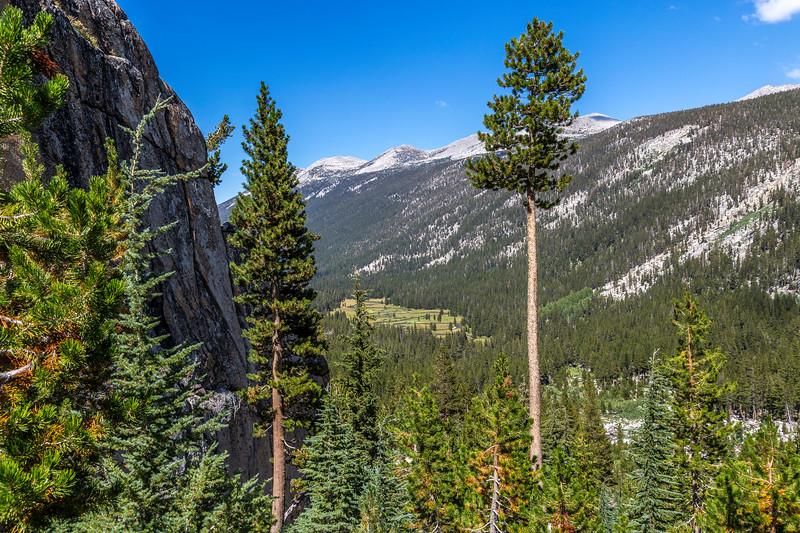 Lyell Canyon-Mammoth Peak and Kuna Crest 9=1=17_MG_3802
