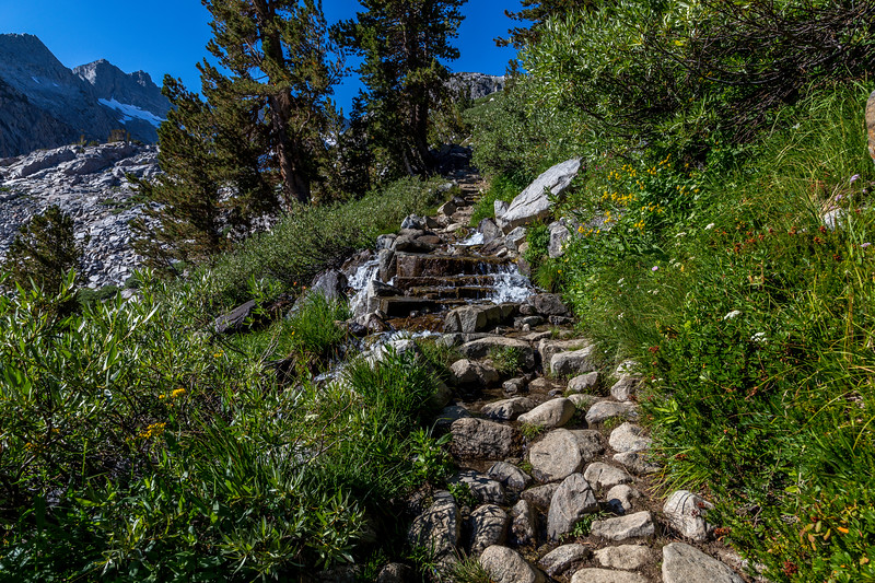 Trail to Donohue Pass 9-2-17_MG_3846