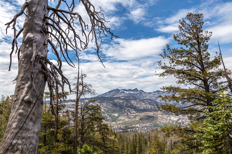 Trail from Reds Meadow to Deer Creek 9-4-17_MG_4087