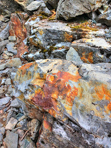 Colorful rock in scree field. iPhone photo