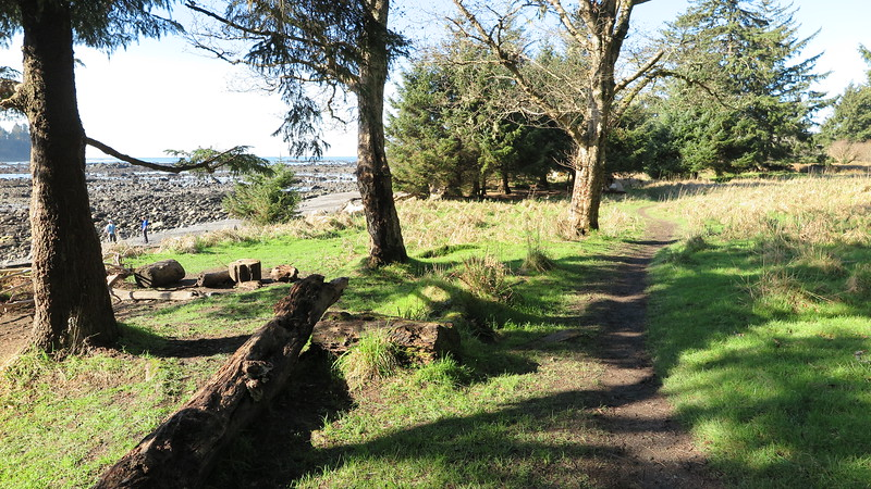 Campsite - Cape Alava
