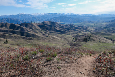 Looking towards Prairie and the Trinity mountains.