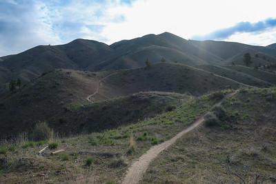 The ridge opens.