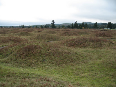 Mima mounds