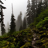 PCT 2016 Suprise Lake Trail 7-22-16_MG_0301