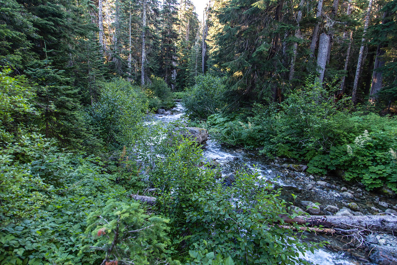 PCT 2016 Water crossing 7-29-16_MG_0981