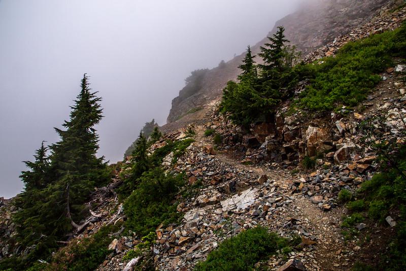 PCT 2016 Trail photo Chikamin Ridge 7-30-16_MG_1288
