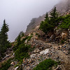 PCT 2016 Trail photo Chikamin Ridge 7-30-16_MG_1288