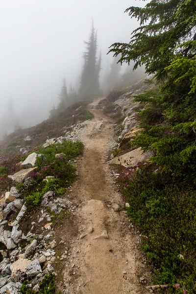 PCT 2016 Trail photo 7-31-16_MG_1353