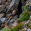 PCT 2016 Marmot 7-30-16_MG_1292