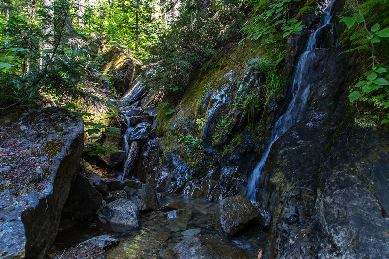 PCT 2016 Trail photo 7-27-16_MG_0785