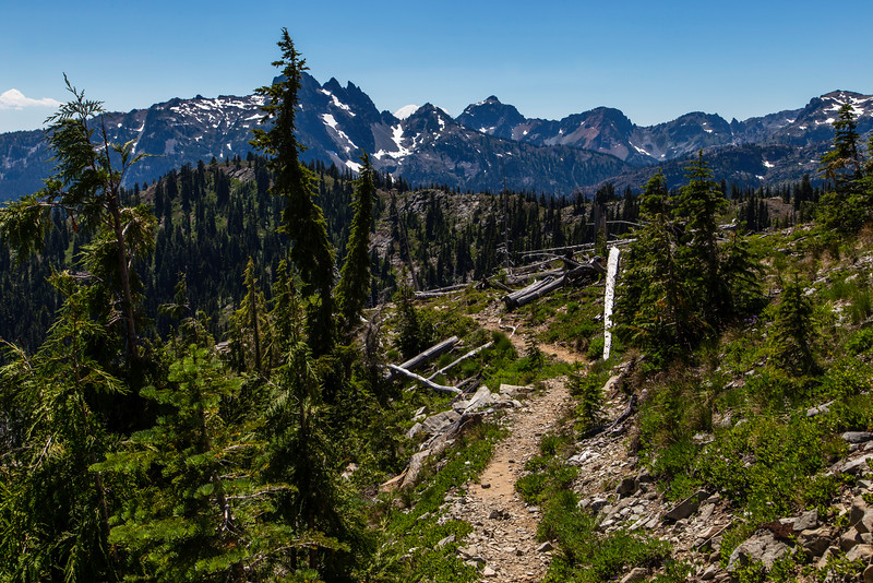 PCT 2016 Trail photo Mt Rainier 7-28-16_MG_0920