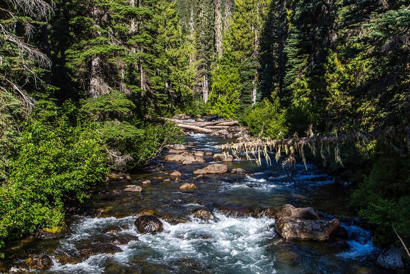 PCT 2016 Trail 7-26-16_MG_0600-2