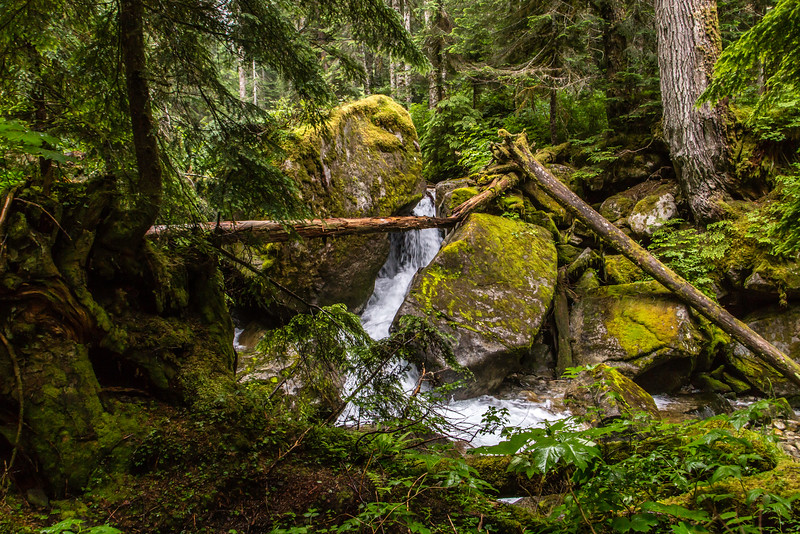 PCT 2016 first waterfall 7-22-16_MG_0280