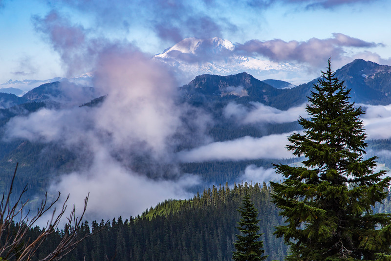 PCT 2016 Above the clouds Mt Rainier 7-31-16_MG_1392