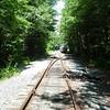 We saw tracks