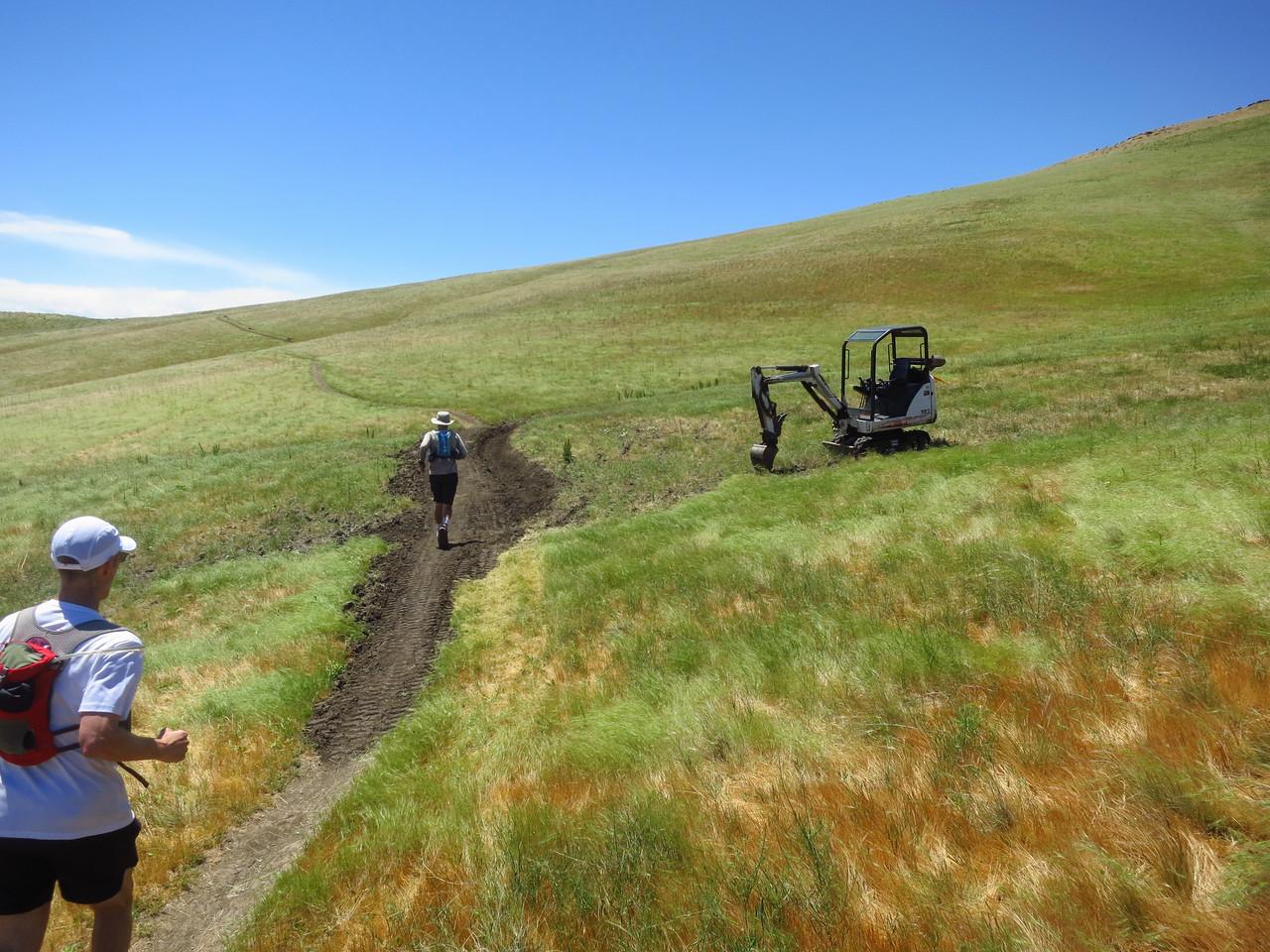 Trail work on a boggy stretch.