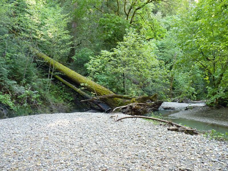 2011 Ryland Dam 040