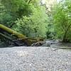 2011 Ryland Dam 037