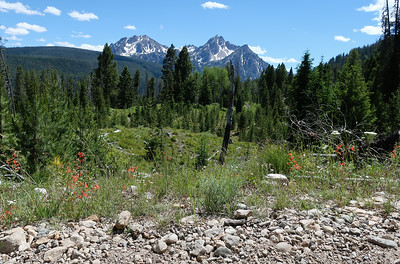 First view of Mt. McGown from Elk Mountain loop.