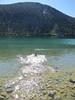 Skeeter fetches in June Lake