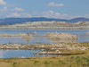 Mono Lake smells, long shot of Tufas