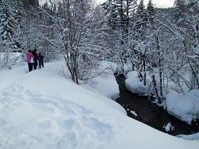 01.31.2016 Snowshoeing, Barlow Trail