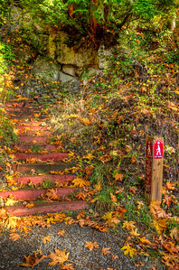The Terrace Trail starts with these railroad tie steps.