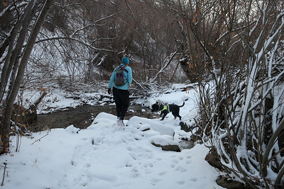 Creek hopscotch section.