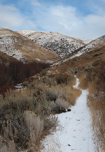 The trail beckons onward with fresh snow.