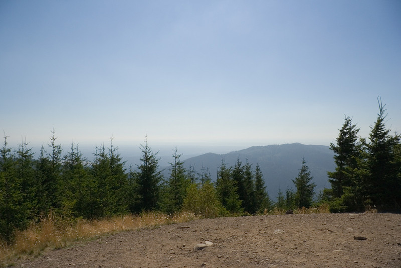 """The """"view"""" from the sumit of Tiger Mt."""
