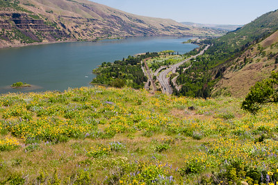 Looking upstream toward The Dalles