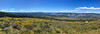 Panorama with Mt Hood on the left, and Mt Adams on the right