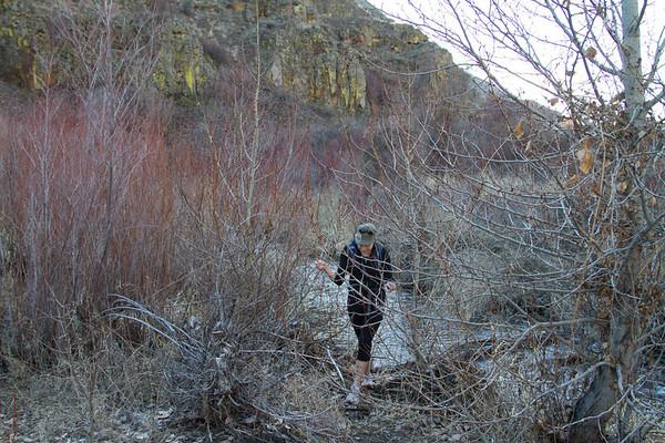 Umtanum Creek Canyon