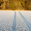 The low sun casts a long shadow on the ice.